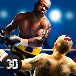 Real Punch Box Fighting 3D Full