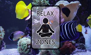 Clownfish Aquarium by Relax Zones