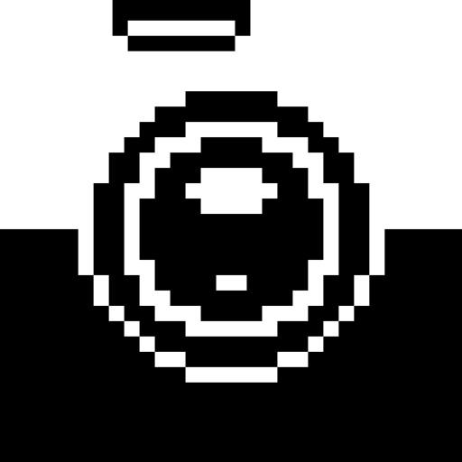 BitCam