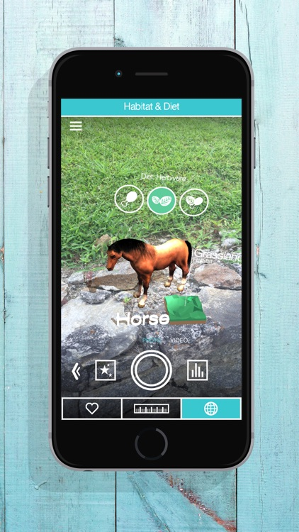 ZooKazam Free screenshot-1