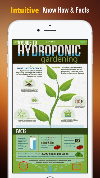 Hydroponics for Beginners-Growing Guide and Tips screenshot-0