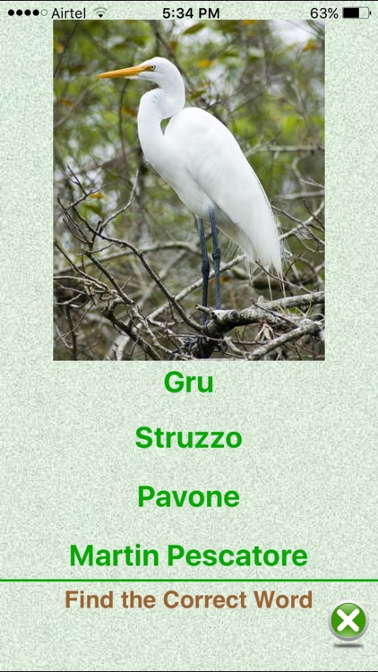 Flashcards Italian Lesson screenshot-3