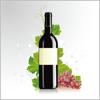 葡萄酒百科  红酒文化世界酒庄知识免费版HD