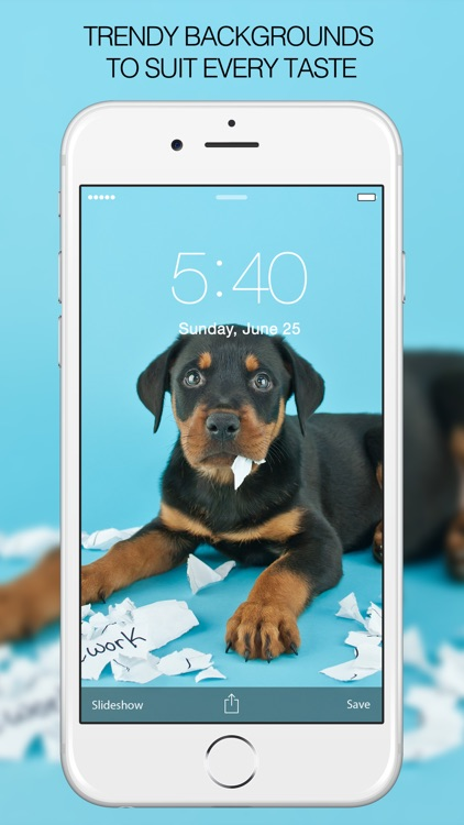 Puppy Wallpapers – Cute Puppy Pictures & Images screenshot-3