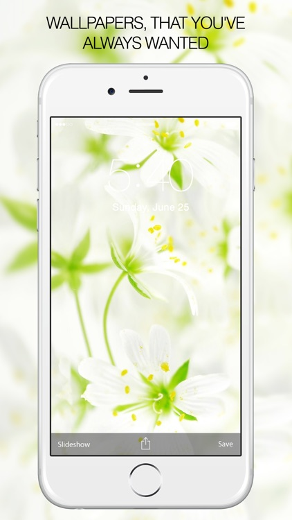 White Backgrounds & White Wallpapers