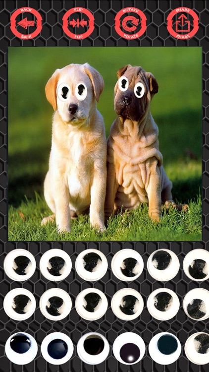 Googly eyes sticker - photo editor crazy eyes screenshot-1