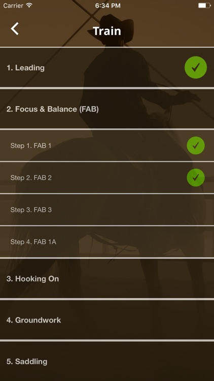 Warwick Schiller's Horse Training Checklist screenshot-3