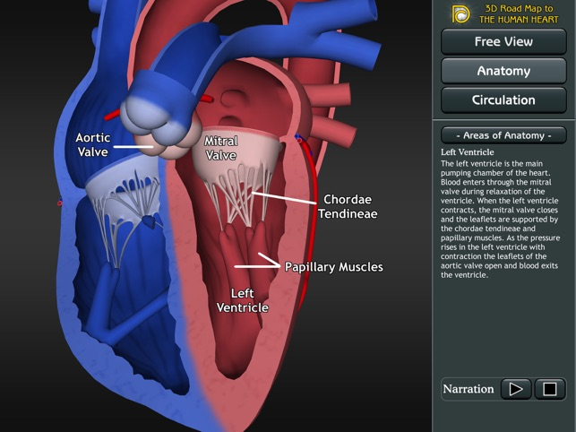 3d Road Map To The Human Heart Im App Store