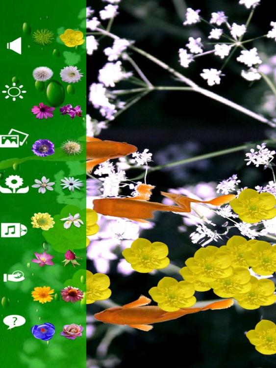 Koi & Flower HD screenshot-4