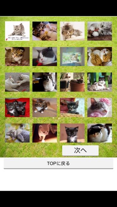 みんなのにゃんこ天気〜天気予報+猫写真で毎日に少しほっこり〜紹介画像5