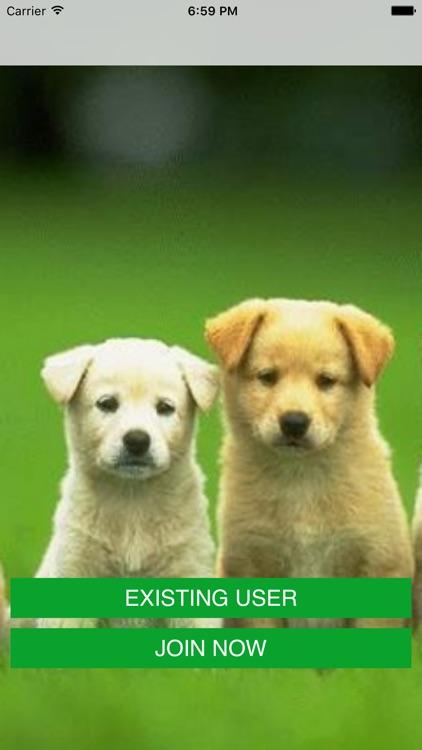 Dog Walker - Fitness Run