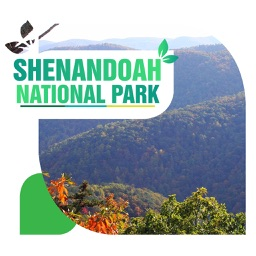 Shenandoah National Park Travel Guide
