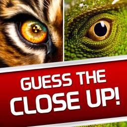 Guess the Close Up! - Photo Trivia Quiz Word Game!