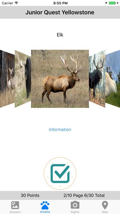 Junior Quest Yellowstone screenshot-3