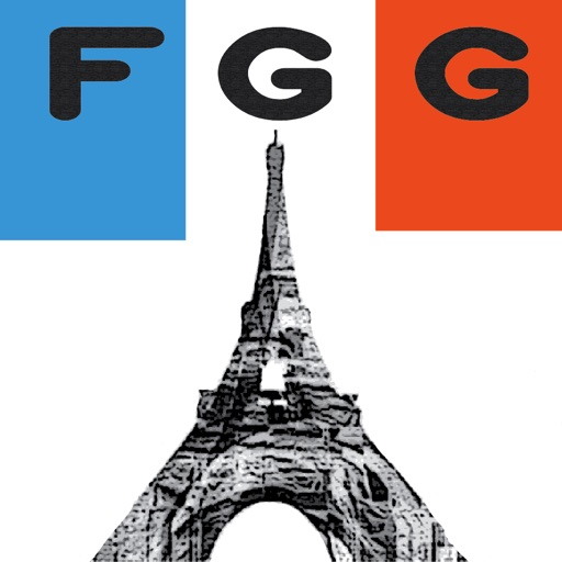 The French Grammar Guide Reference