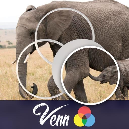 Venn Elephants: Overlapping Jigsaw Puzzles