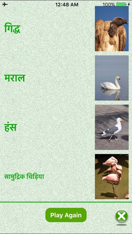 Flashcards Hindi Lesson screenshot-0