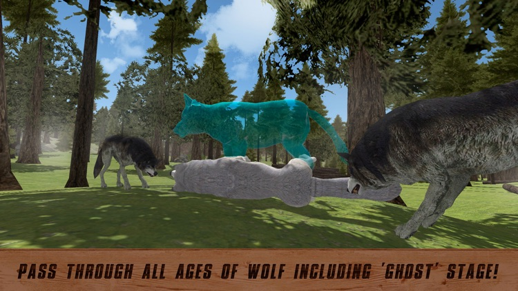 Wolf Quest For Ipad