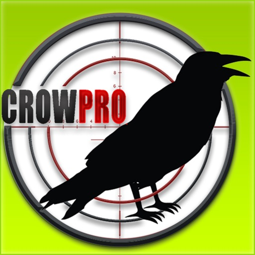 Forest Crow Hunting : 3D Birds Sniper Kill Shot