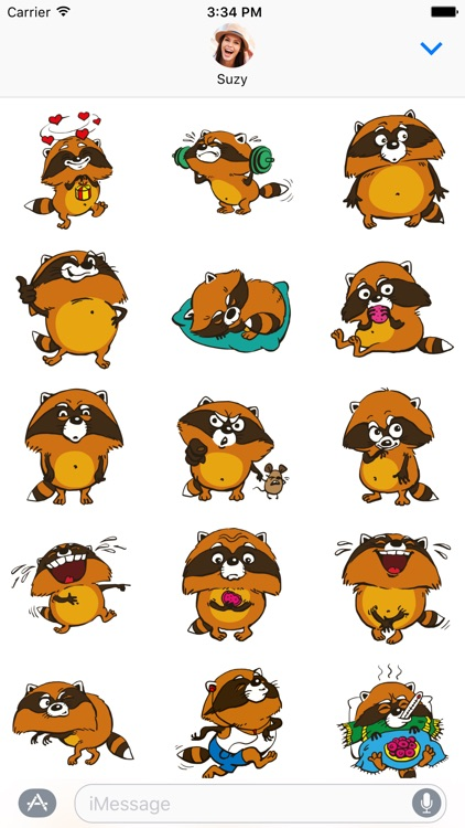 Crazy Raccoon Pet Stickers