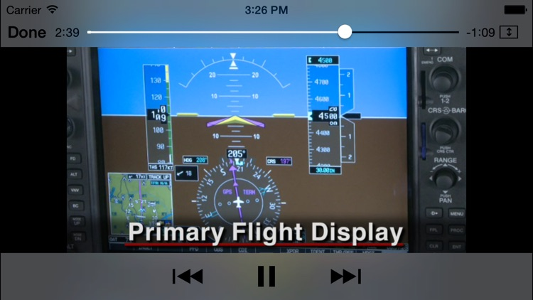 Garmin G1000 Checkout screenshot-4