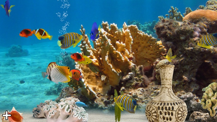 MyReef 3D Aquarium 2 Lite screenshot-0