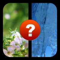 Codes for 2 Pics 1 Word, What's the Word? A photo guessing game. Test your IQ with the ultimate picture puzzle quiz! Hack