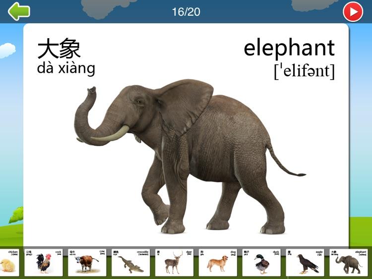 宝宝看图认物双语点读卡 screenshot-3