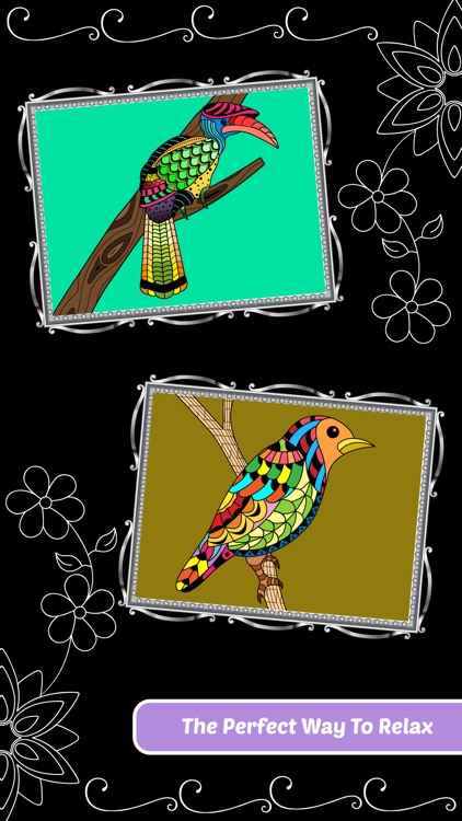 Love Birds Art Class: Stress Relieving Coloring Books for Adults screenshot-4