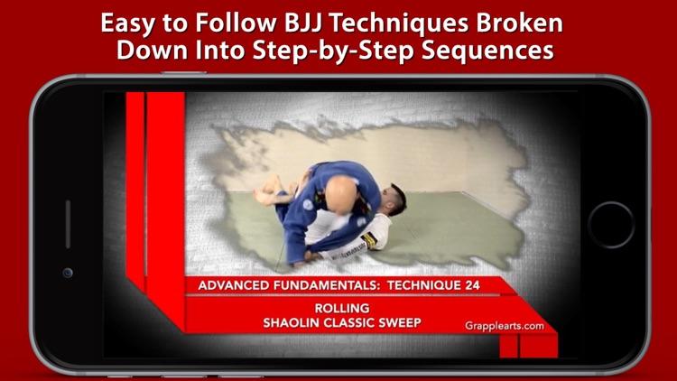 Advanced Fundamentals of Brazilian Jiu-Jitsu by Brandon Mullins and Stephan Kesting