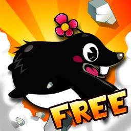 Mole Dash Free