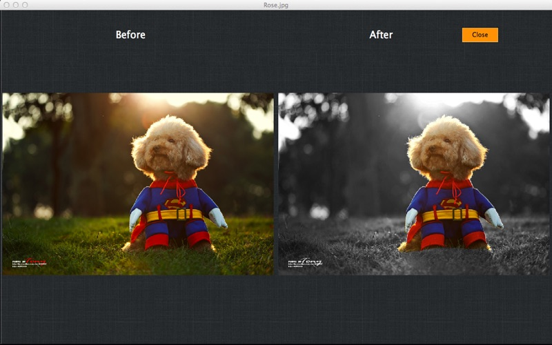 My Splash Effects Screenshot