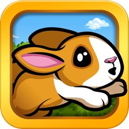 Pet Dash - Racing Animals!