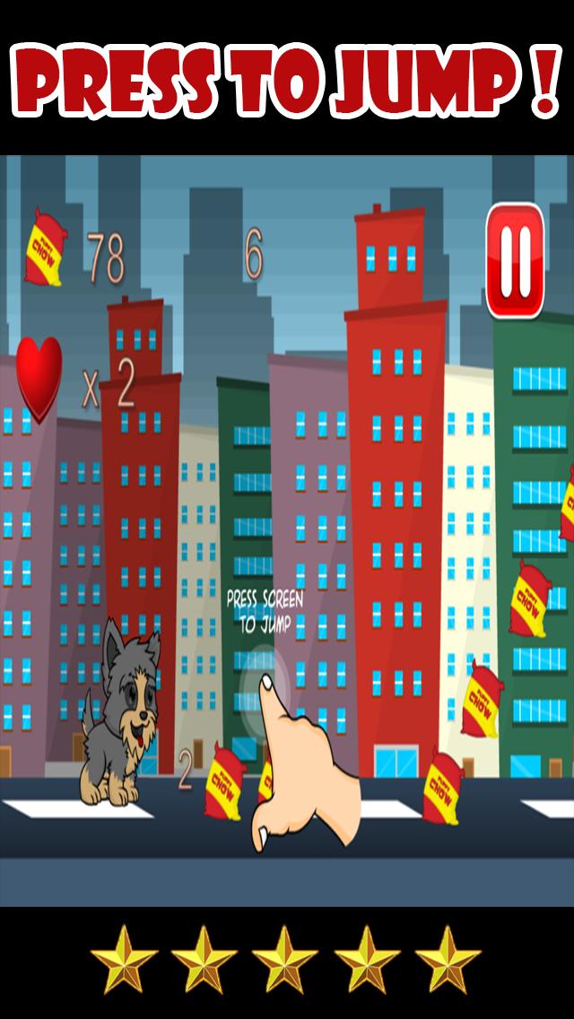 Yorkie Pup Fun Run screenshot two