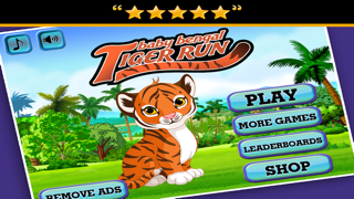 Baby Bengal Tiger Run : A Happy Day in the Life of Fluff the