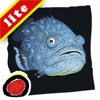 Abby's Aquarium Adventures- Predators: Learn about the world of sea predators through this enticing story filled with facts and fun quirks about fish and sea animals; written by Heidi de M...