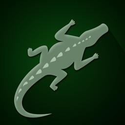 Dare to Walk on Crocodile - fast tap and run arcade game