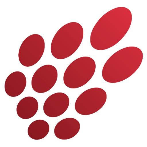 Razberi Mobile - Razberi Technologies Inc.