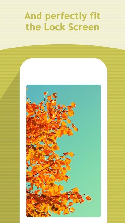 Seasons Wallpapers & Backgrounds - HD Themes screenshot-3