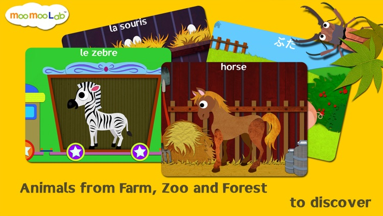 Animal World - Peekaboo Play & Learn for Baby, Toddler and Preschool Kids Full Version