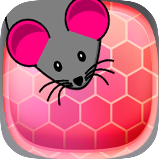 Greedy Mouse Escape from Kitchen icon
