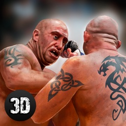 MMA Fighting Championship 3D Full