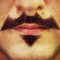 Mustache Booth FREE - Grow & Morph a Hilarious Beard Sticker on Yr Face