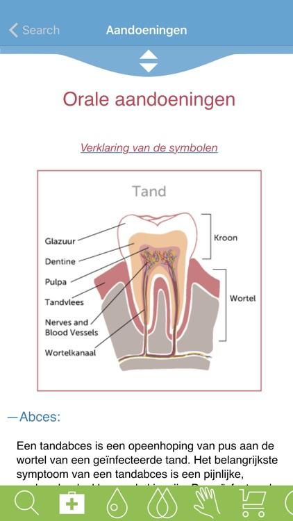 Modern Essentials Dutch