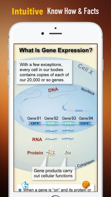 Genes 101:Theory and Biological Basic screenshot-0