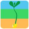 六安蔬菜种植