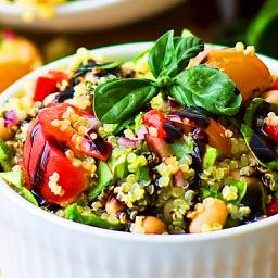 Abs Diet Recipes Plus+