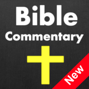 65 Bibles And Commentaries With Bible Study Tools app review
