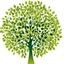 Resolution Tree