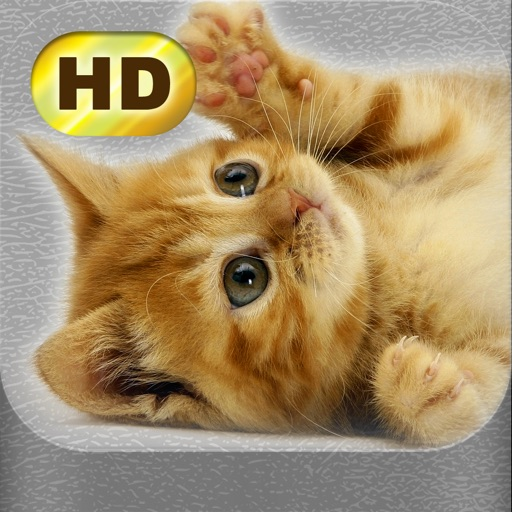 Cute Pics iOS App